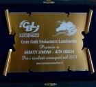 Jan 18th 2014: Lombardian Endurance Awards. - Arabian Horses